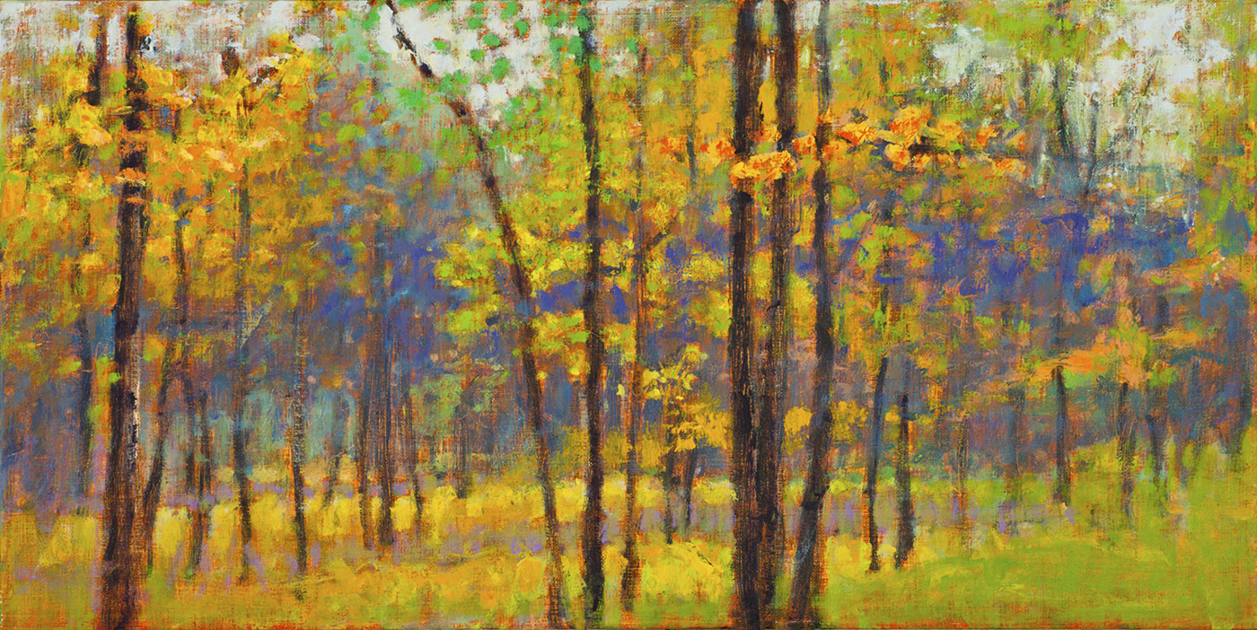 """Forest Study     oil on canvas   10 x 20""""   2004"""