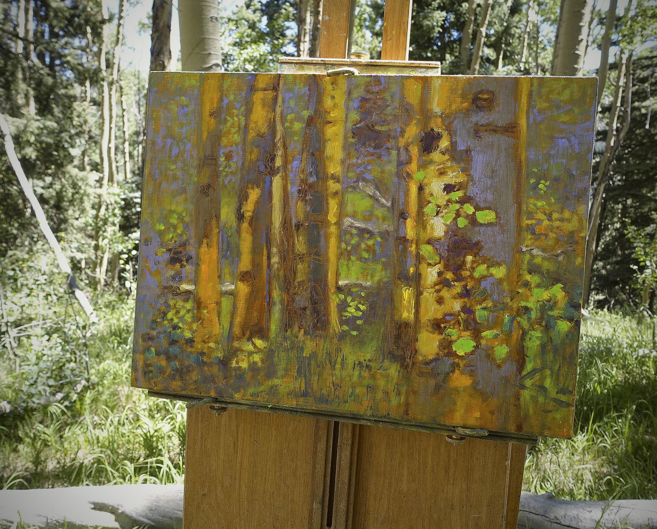 New aspen series in progress up on the mountain