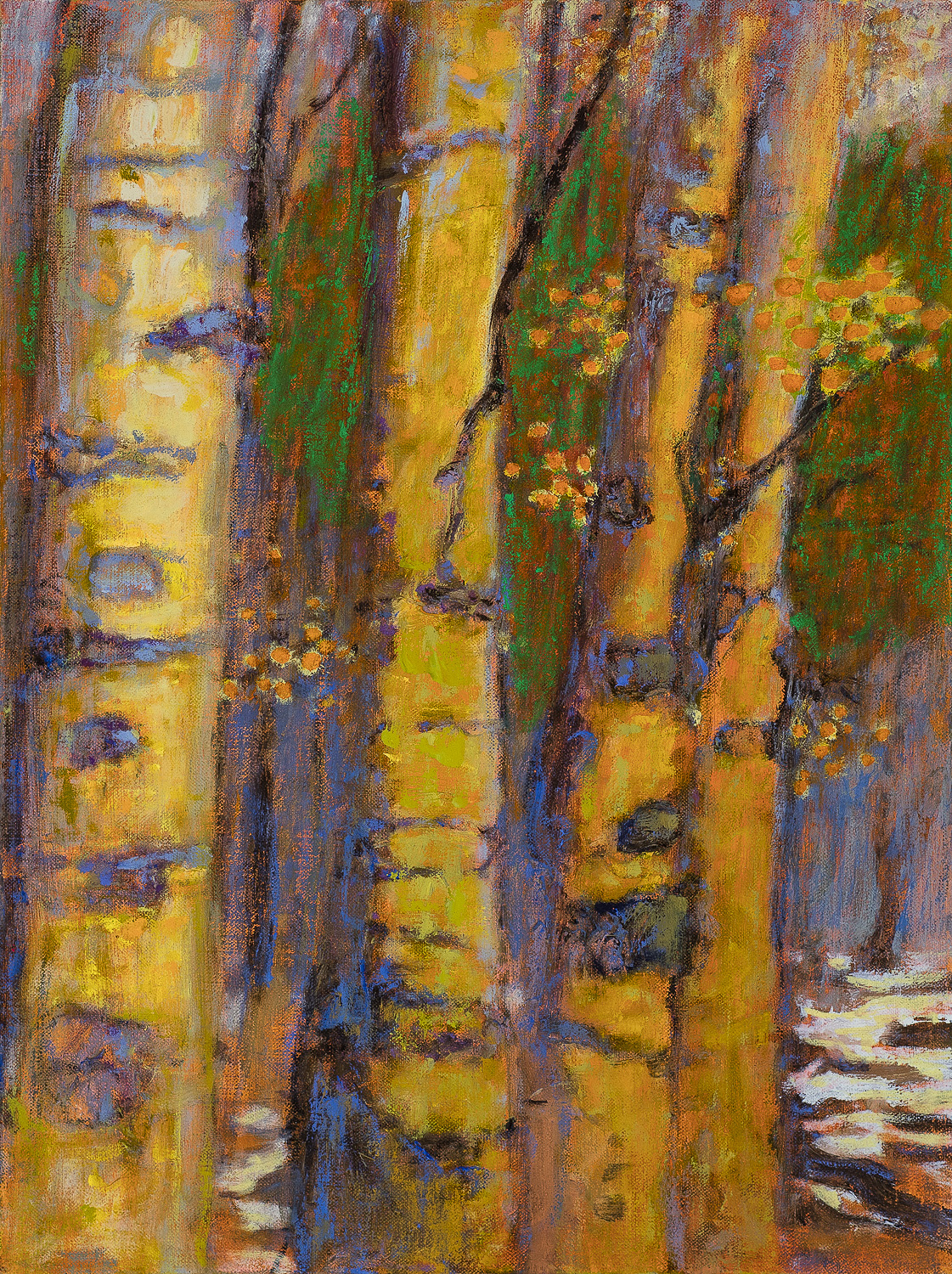 """Forest In Spring   