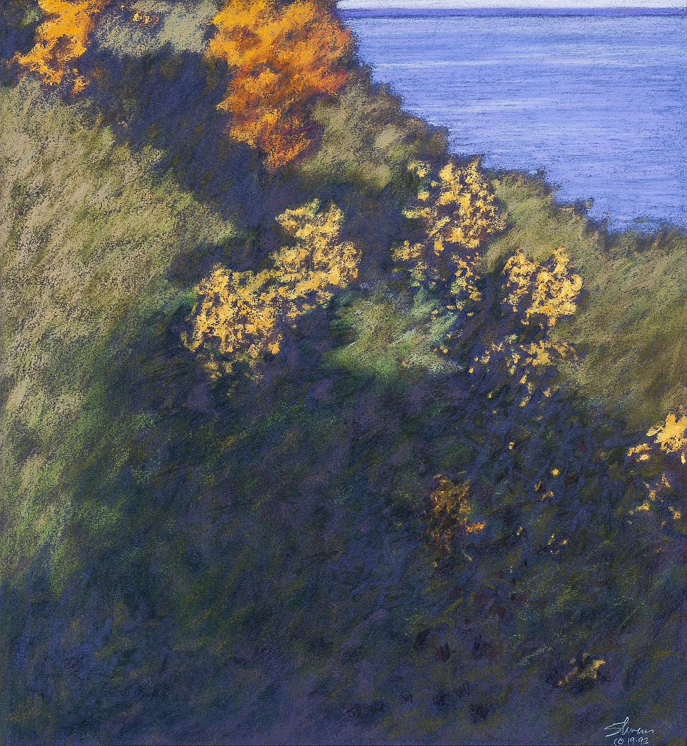 Approaching the Lake | pastel on paper | 16 x 15"