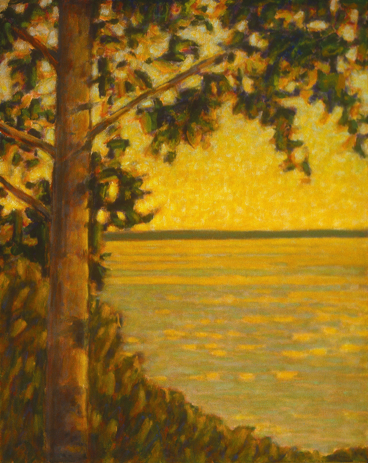 """View From the Walking Trail   