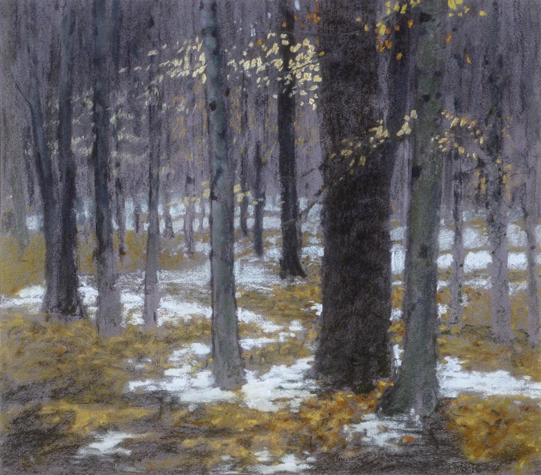 "Dappled Snow   | pastel on paper | 15 x 17"" | 1993"