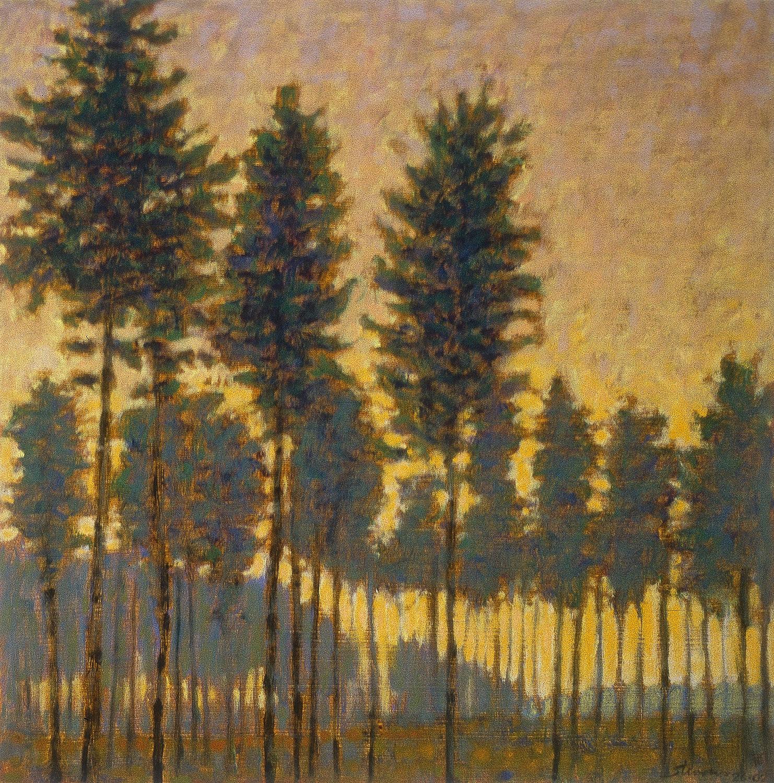 "Pine Grove   | oil on paper | 14 x 14"" | 2002"