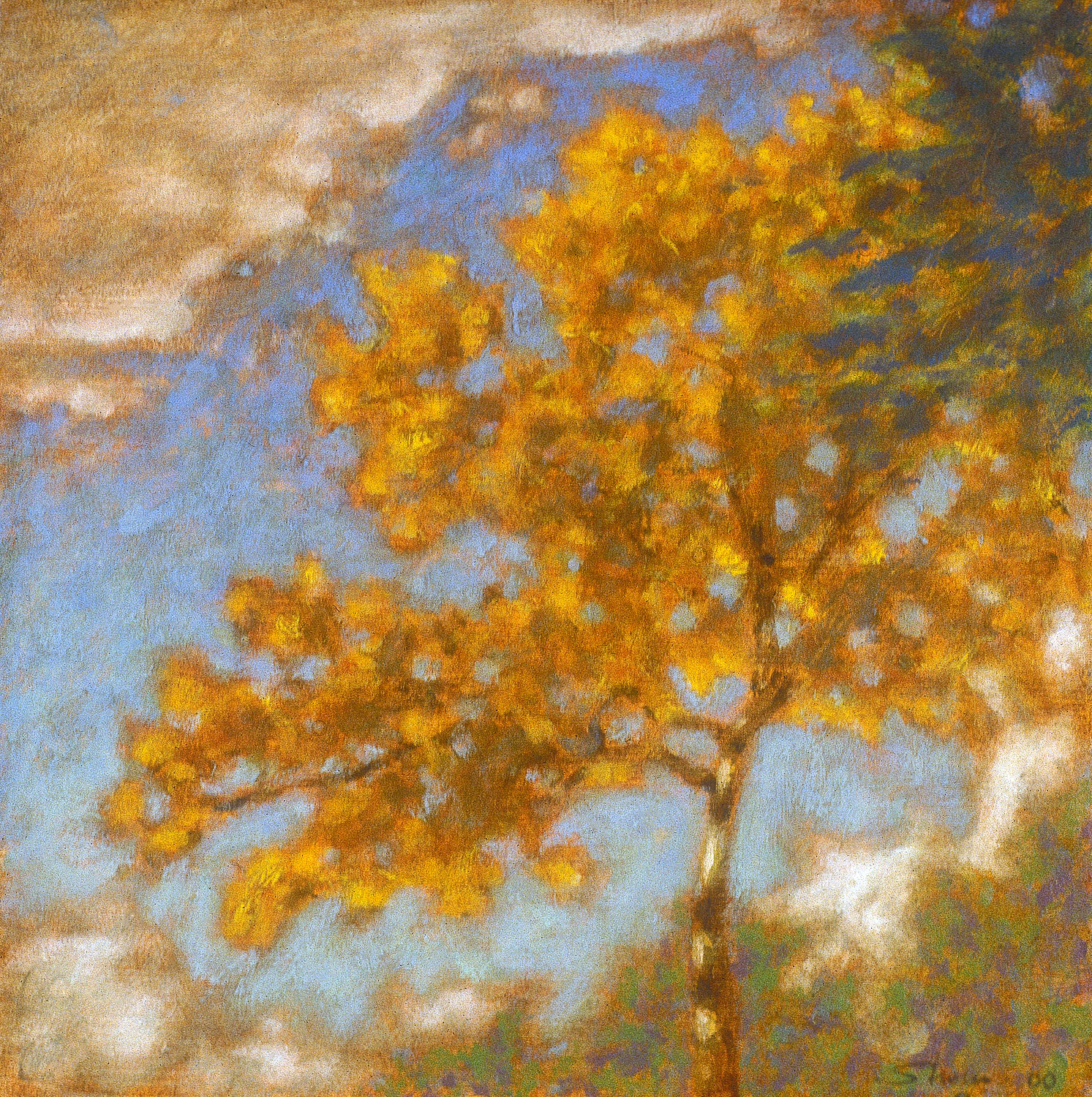 Pine River  | oil on linen | 12 x 12"