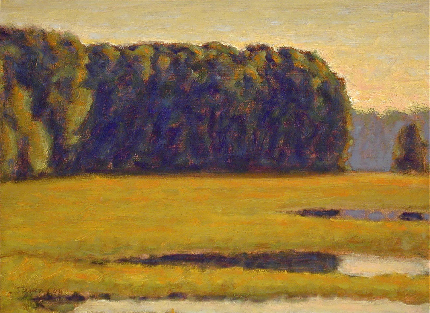Field of Puddles  | oil on canvas | 12 x 16"