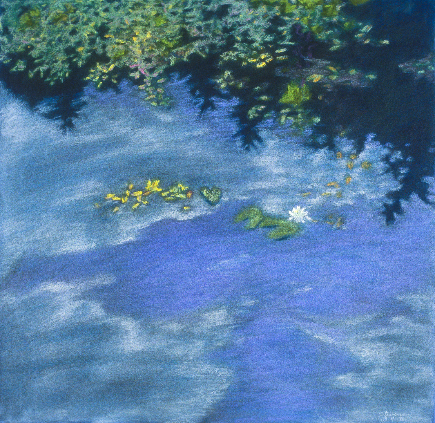 Pond Reflections  | pastel on paper | 16.5 x 17"
