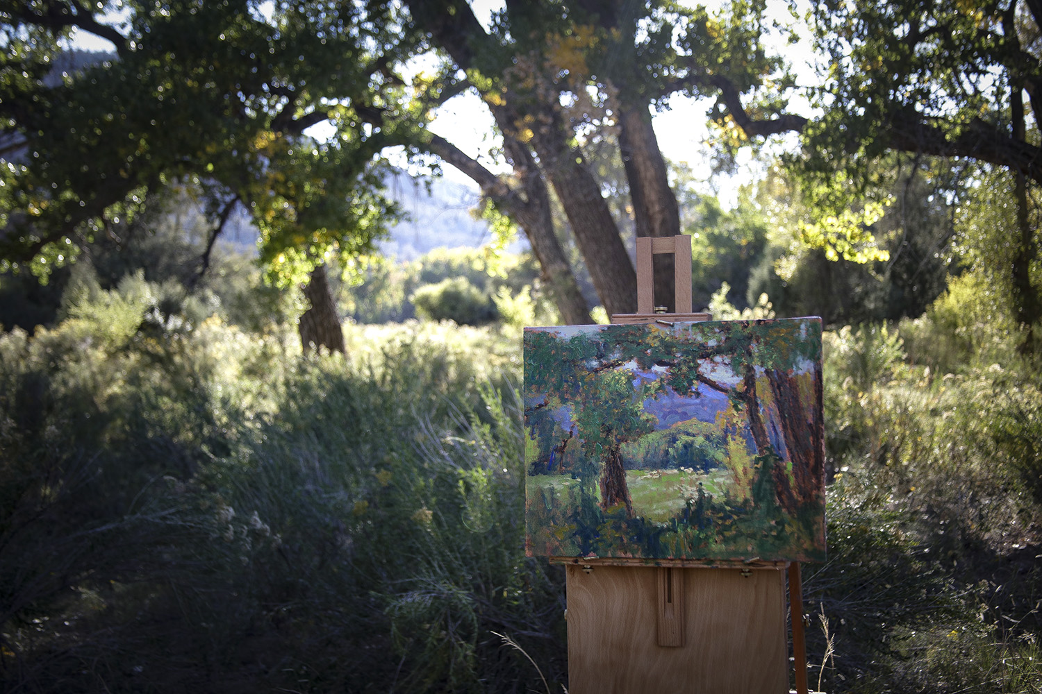 plein air painting in progress near Abiquiu, NM