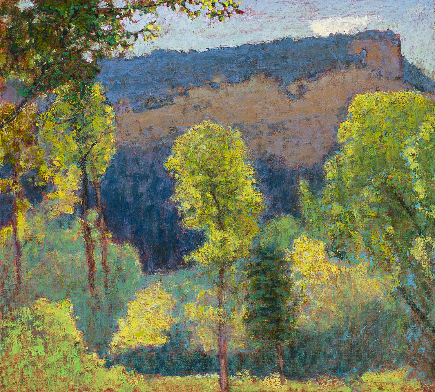 Gallina Canyon  | oil on linen | 18 x 20"