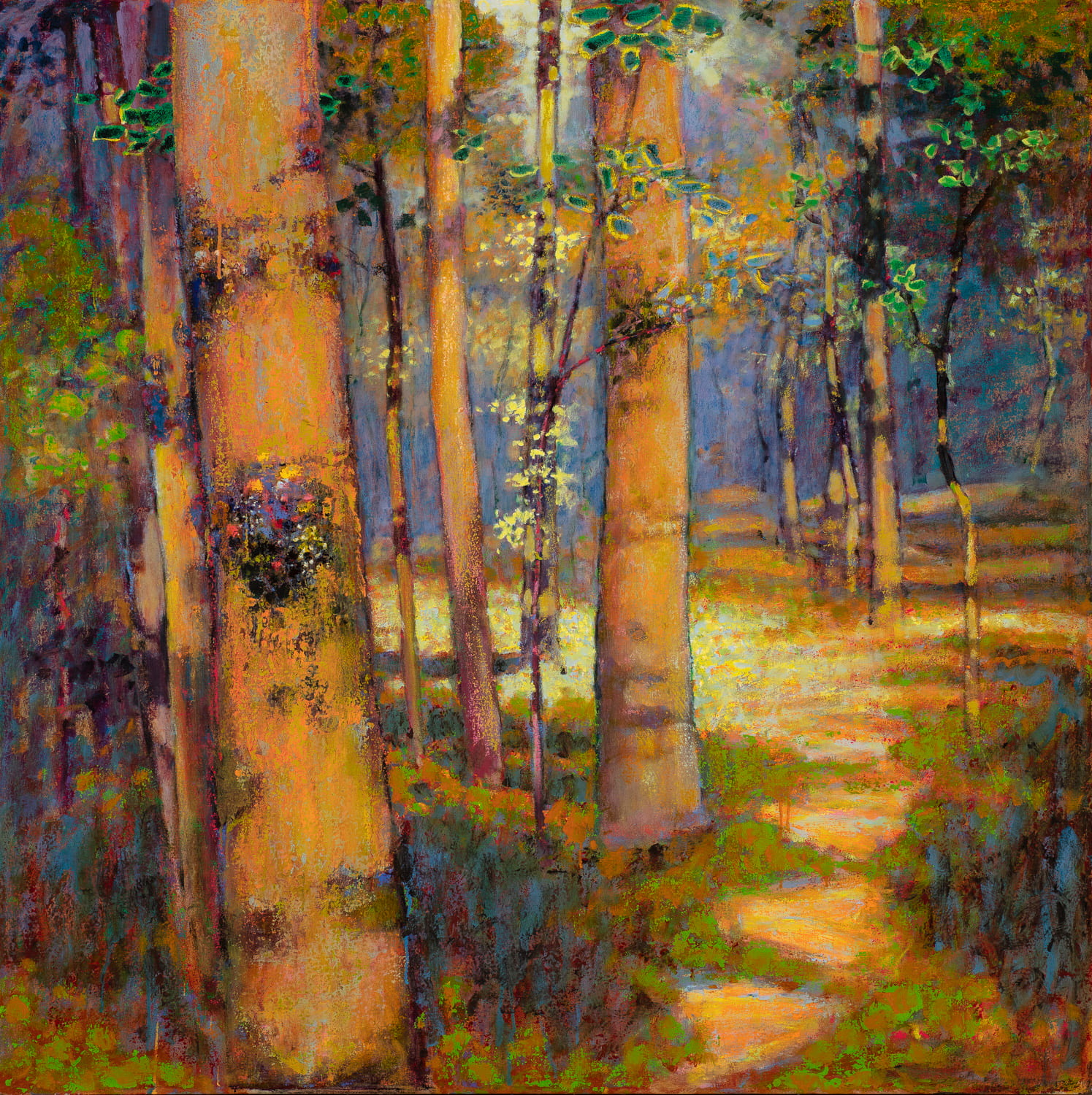 "The Forest is Calling  | oil on canvas | 48 x 48""  SOLD"