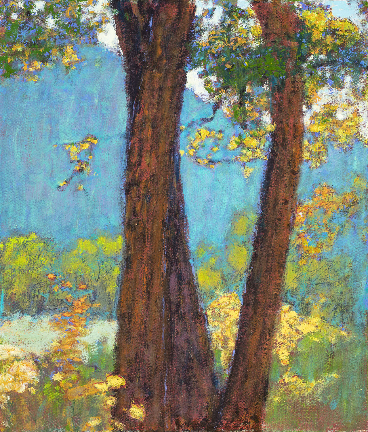 Afternoon Light ( Gallina Canyon )  | oil on linen | 14 x 12"