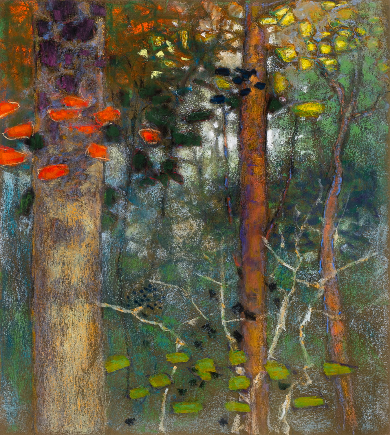 Woodland Ballad  | pastel on paper | 20 x 18"