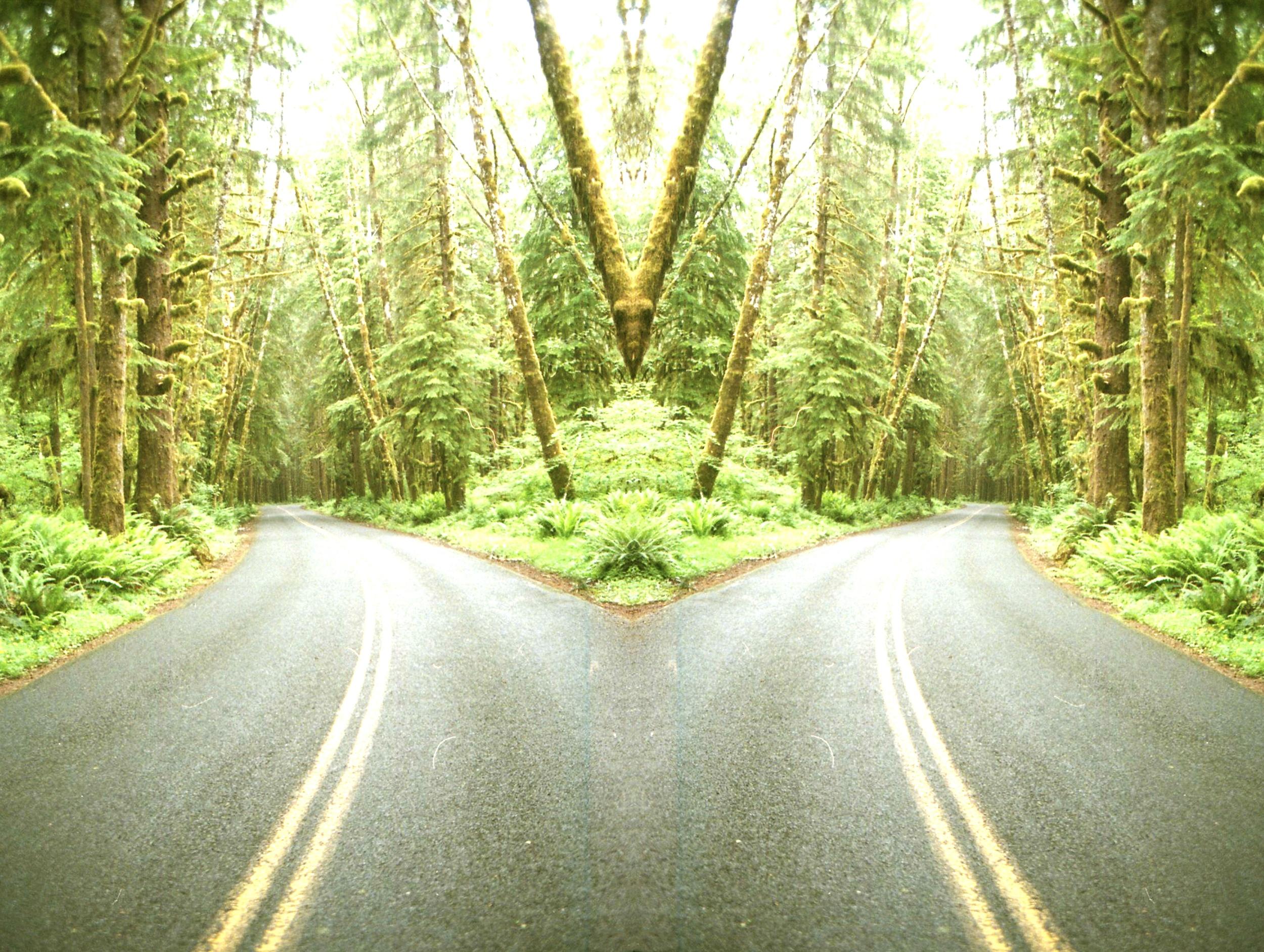 mirroredroad copy.jpg