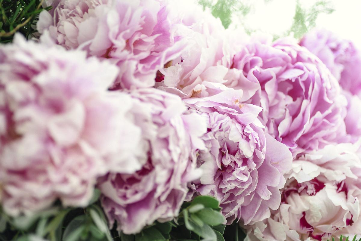 Laurel Gardens Wedding by Christina Maldonado Photography (30 of 143).JPG