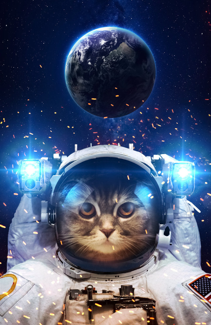 Yes, Sir Meowmixalot can come too. As a Catstronaut.