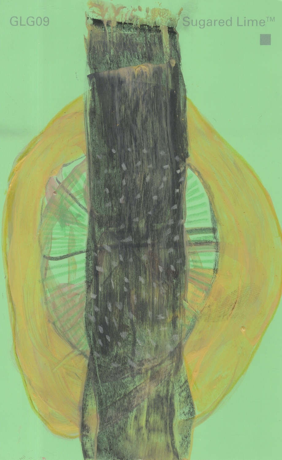 surgared lime 1.jpeg