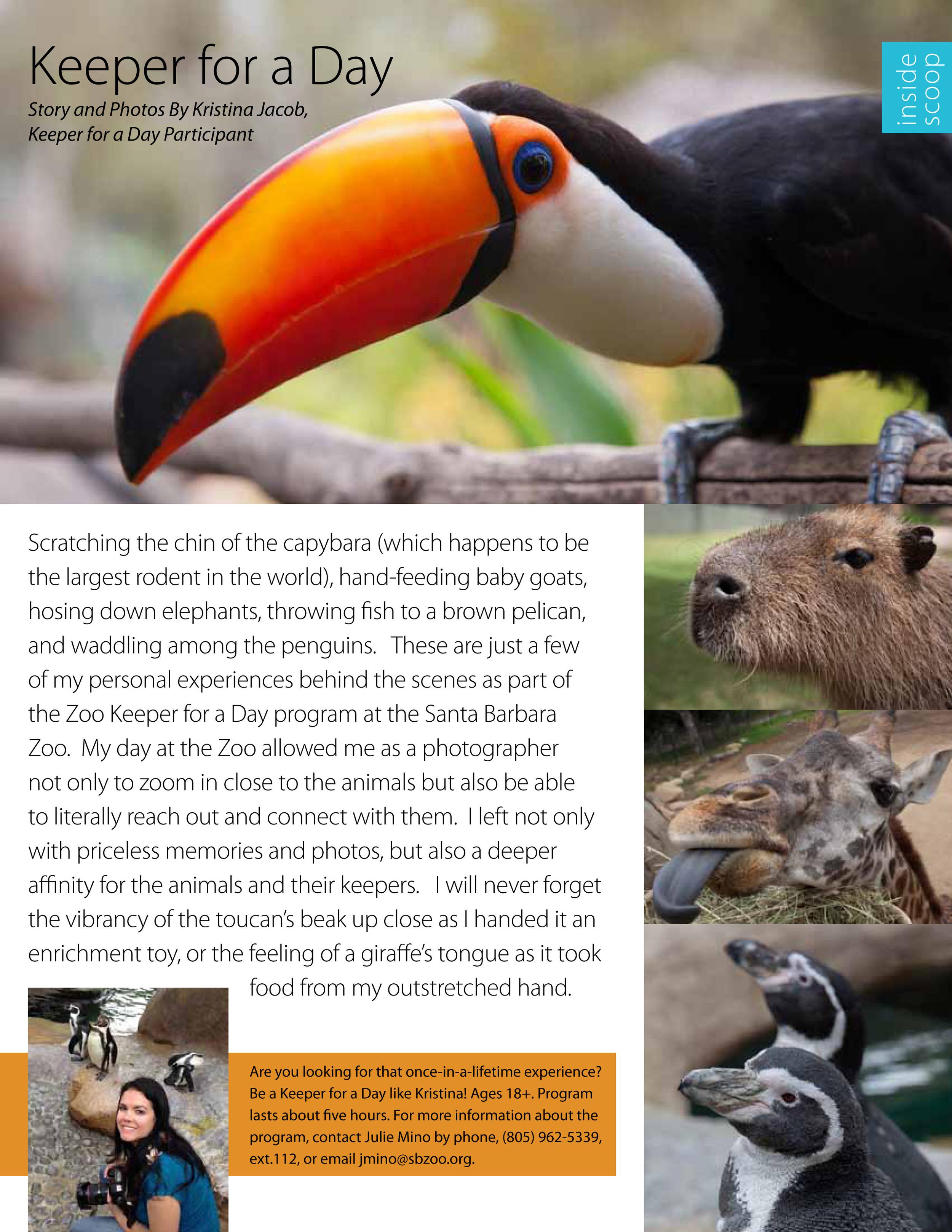 Santa Barbara Zoo's quarterly publication,  Zoo News