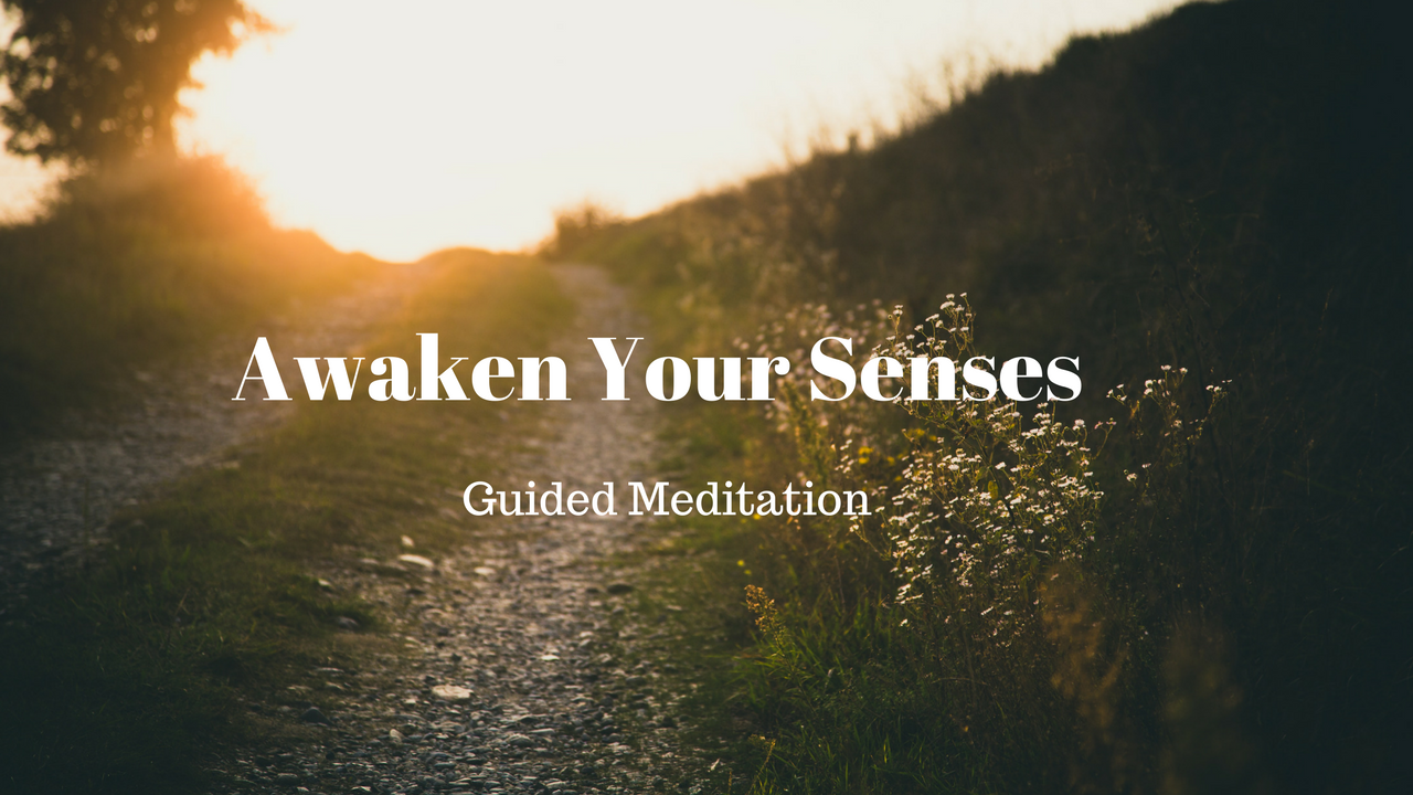 Awaken Your Senses meditation .png