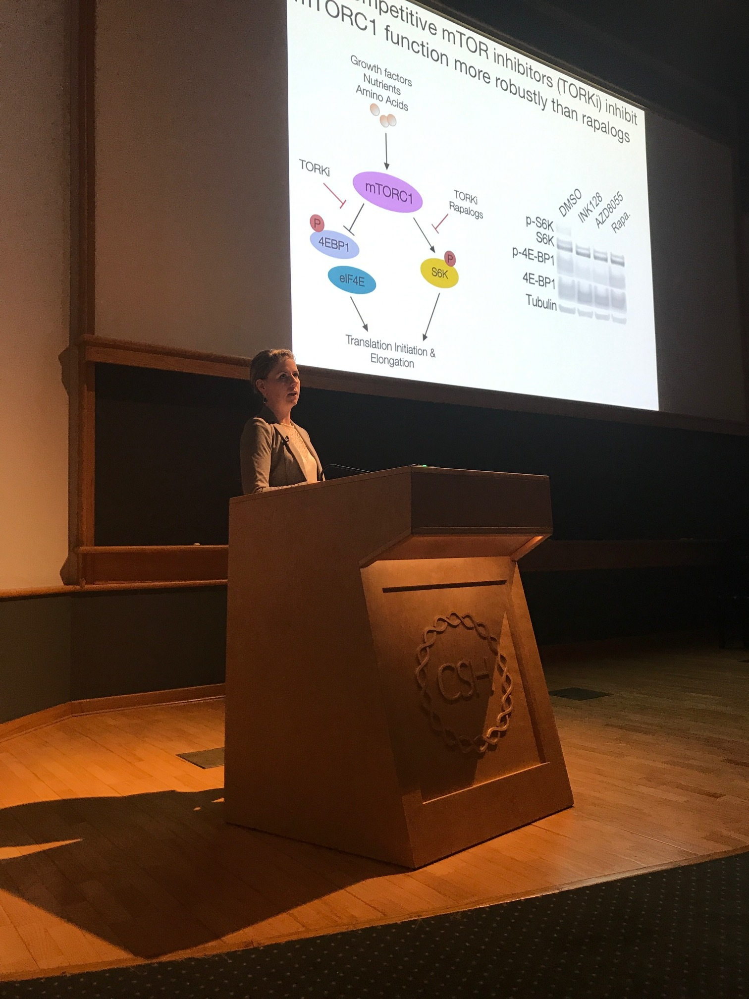 Megan talks about her findings - CSHL Cell Death Meeting, 18 Aug 2017