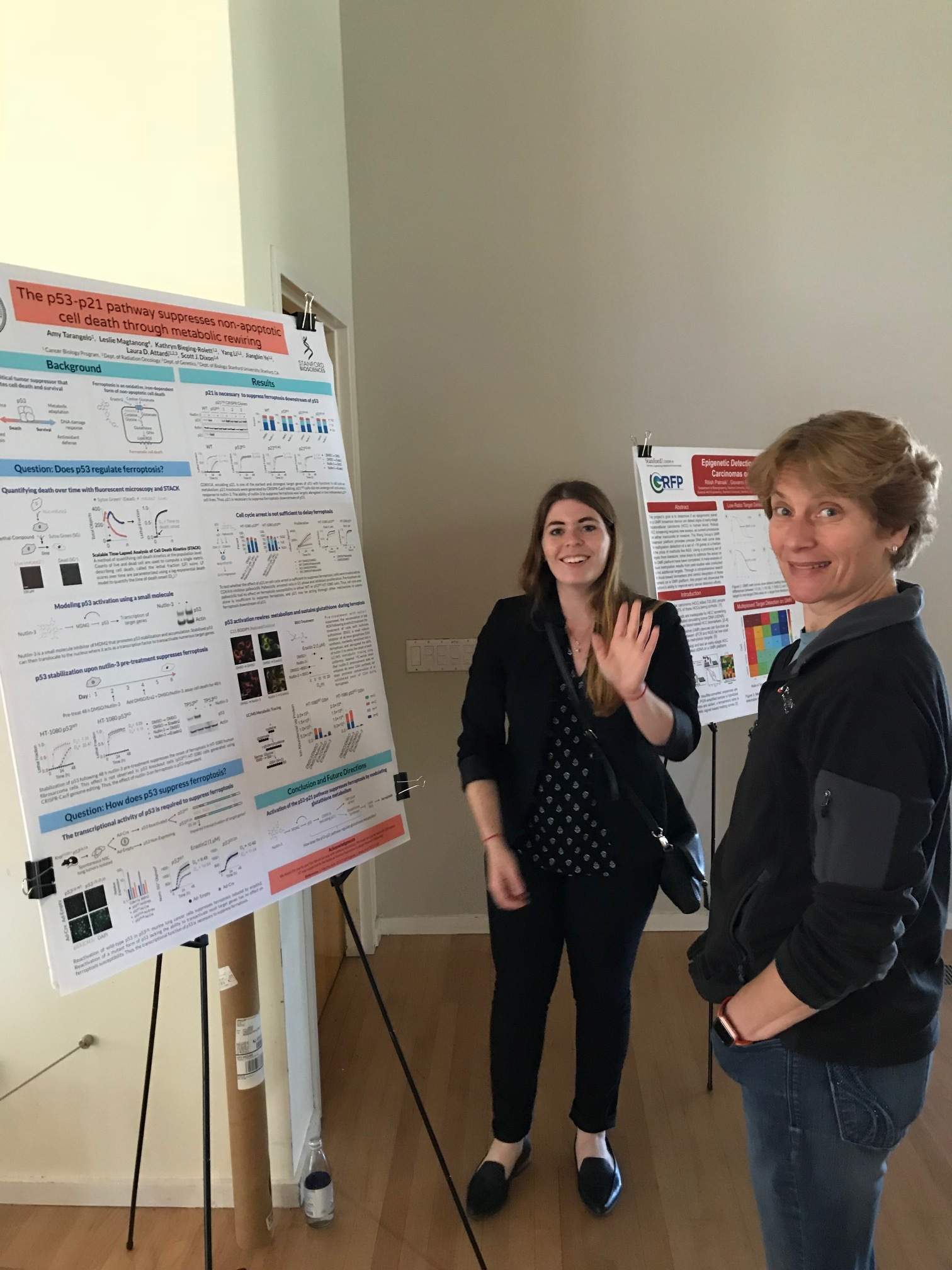 Amy discussing her work at the ChEM-H retreat - 26 Jun 18