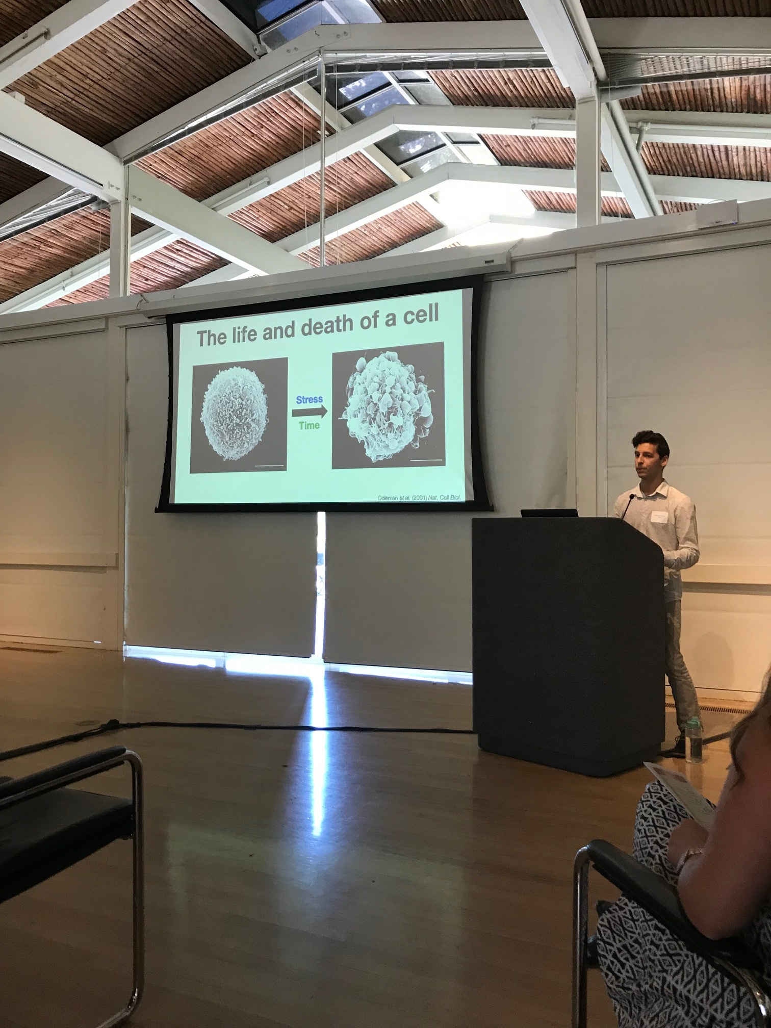 Gio talking cell death at the ChEM-H retreat - 26 Jun 18