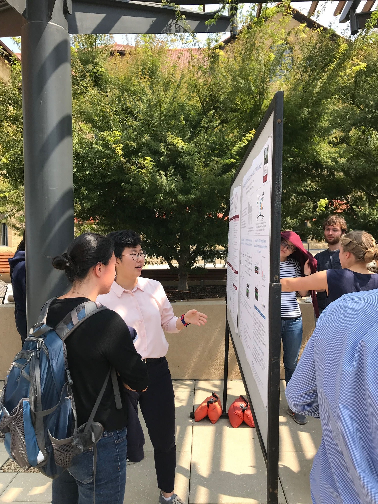 Julie Lee discussing her summer research at the SURP poster session - 22 August 18