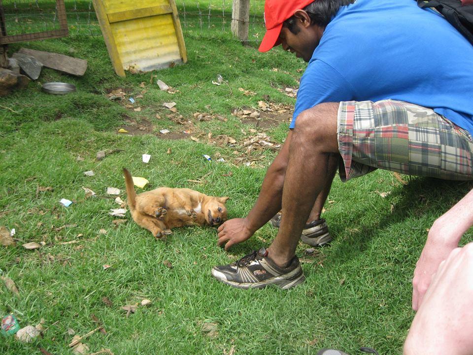 Arun using his dog training skills.
