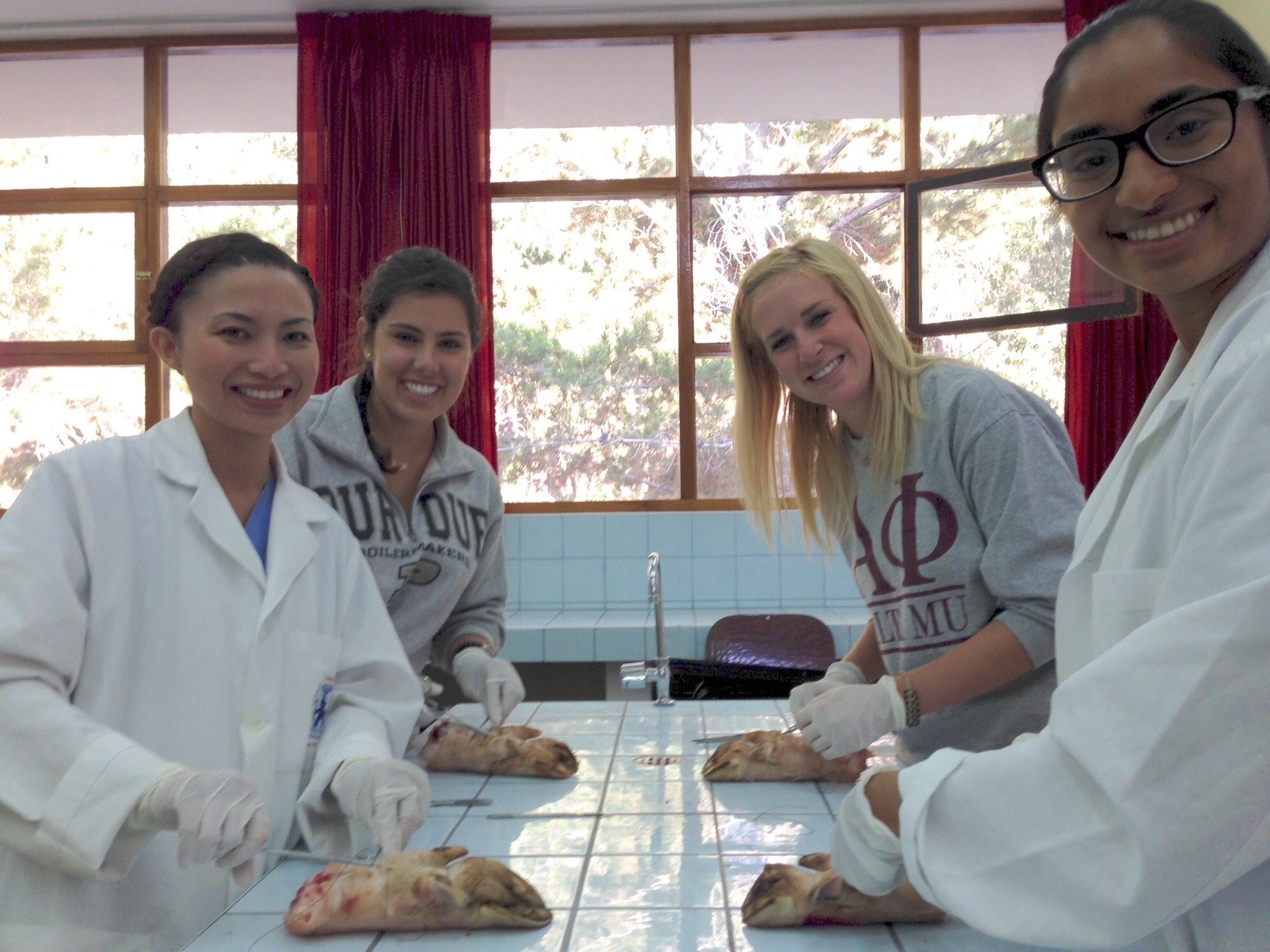 Suturing class is always a big hit for our SIHFers! Check out those pig feet!
