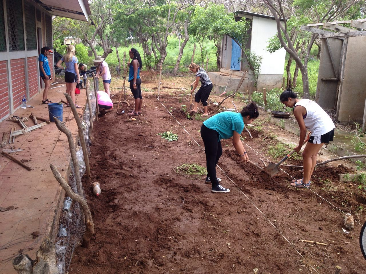SIHF Nicaragua  Fellows assist local food experts with the community garden.