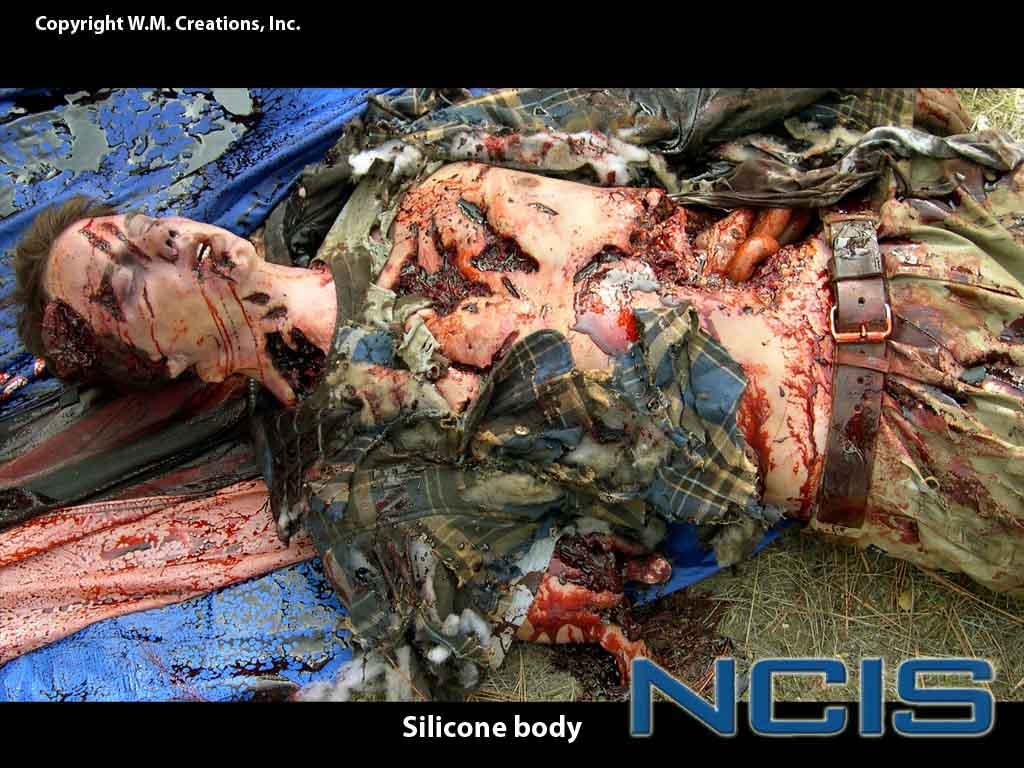 ncis03.jpg