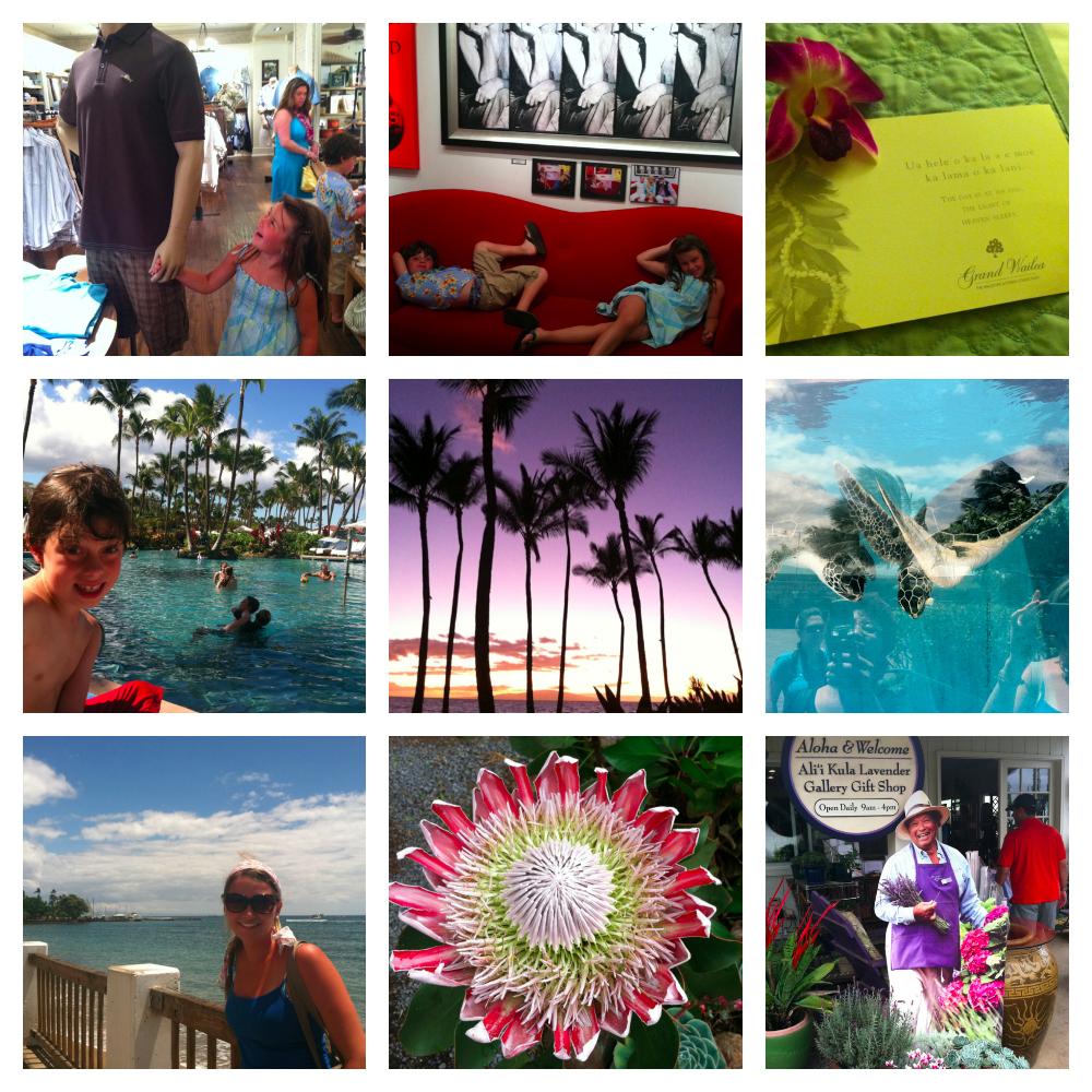 PicMonkey Collage-8.jpg