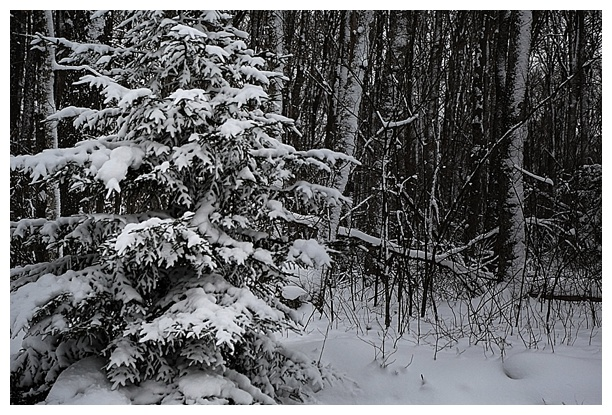 Deep-Creek-Winter-Weekend_0036.jpg