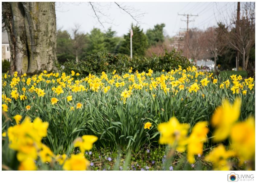 beata-lorinc-headshots-patterson-park-baltimore-april_0016.jpg