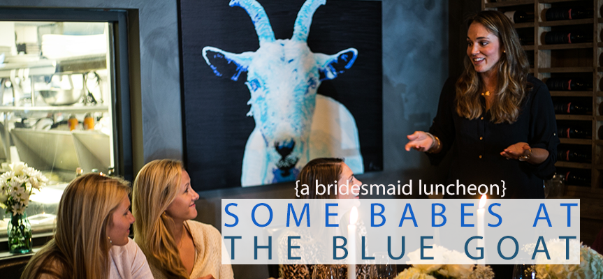 babes-the-blue-goat-header.png