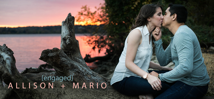 allison-mario-engaged-living-radiant-photography-header-image.png