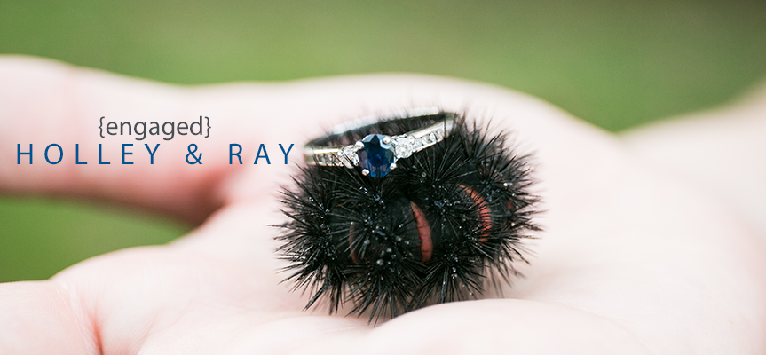 holley-ray-engaged-header-image-living-radiant-photography.png