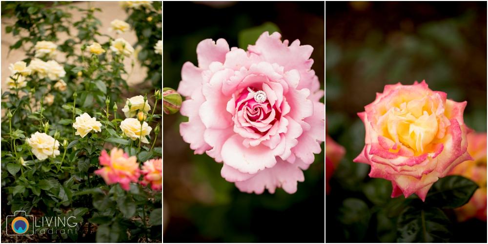 melissa-chris-brookside-gardens-engagement-session-outdoor-gardens-living-radiant-photography-maggie-patrick-nolan_0012.jpg