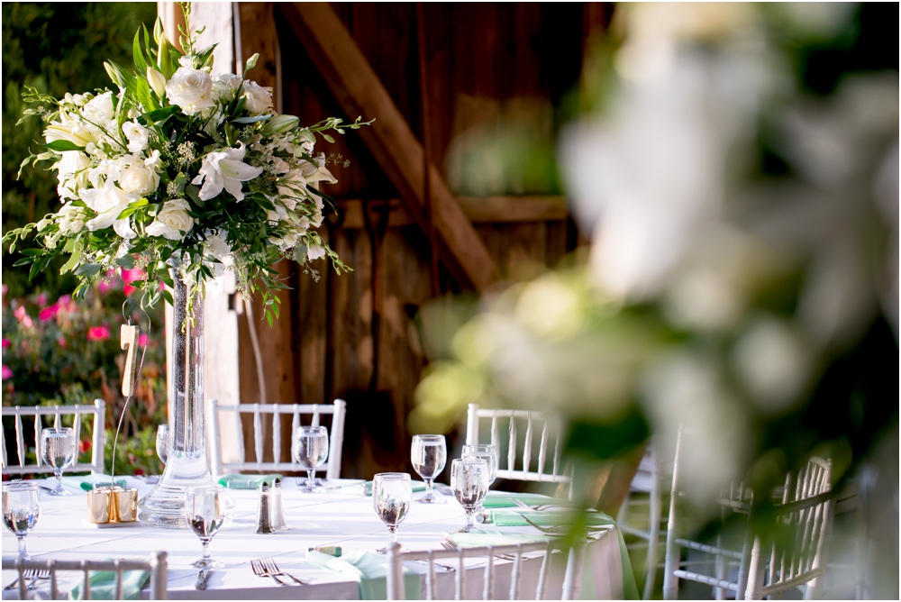 Justin Tiffany Inverness Farms Wedding Living Radiant Photography photos_0131.jpg