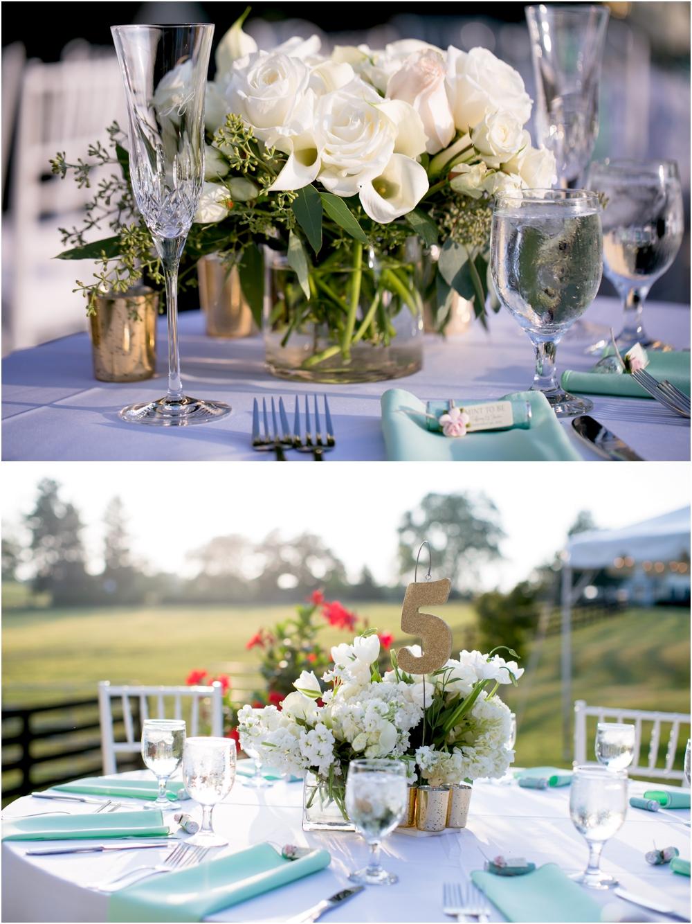 Justin Tiffany Inverness Farms Wedding Living Radiant Photography photos_0132.jpg