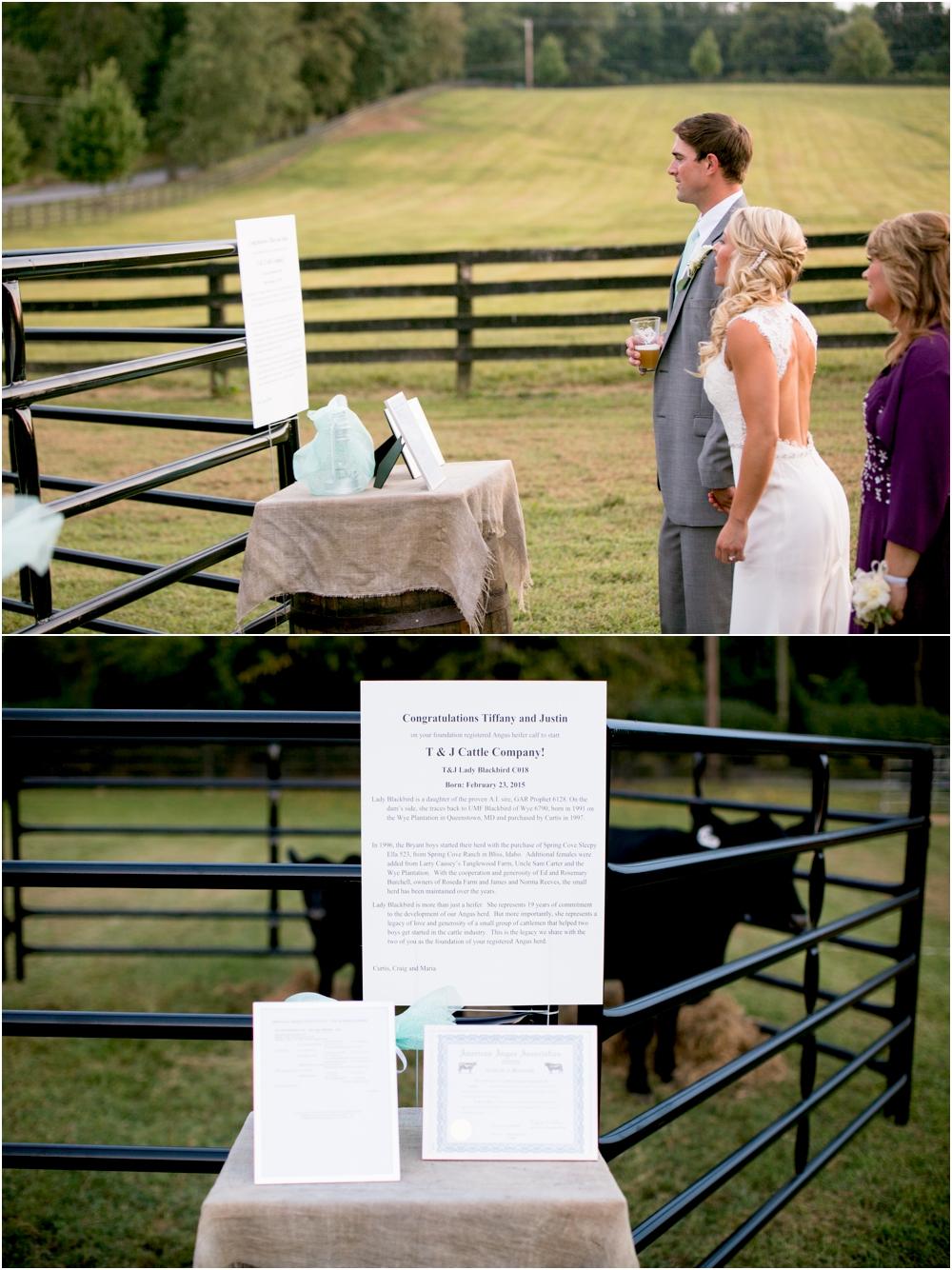Justin Tiffany Inverness Farms Wedding Living Radiant Photography photos_0155.jpg