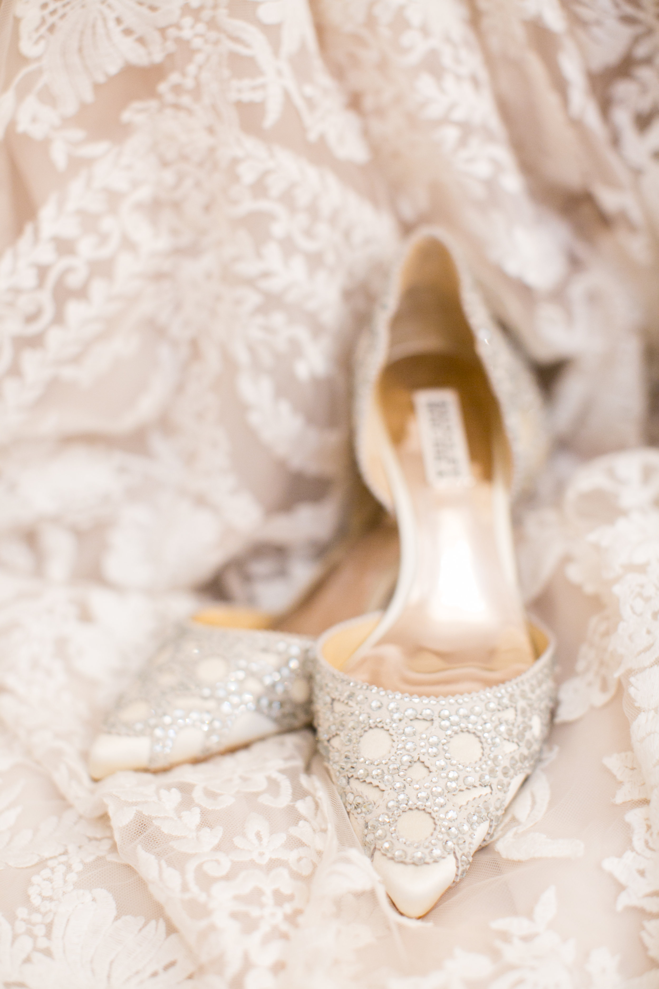 Uveges Wedding Living Radiant Photography highlights-1.jpg