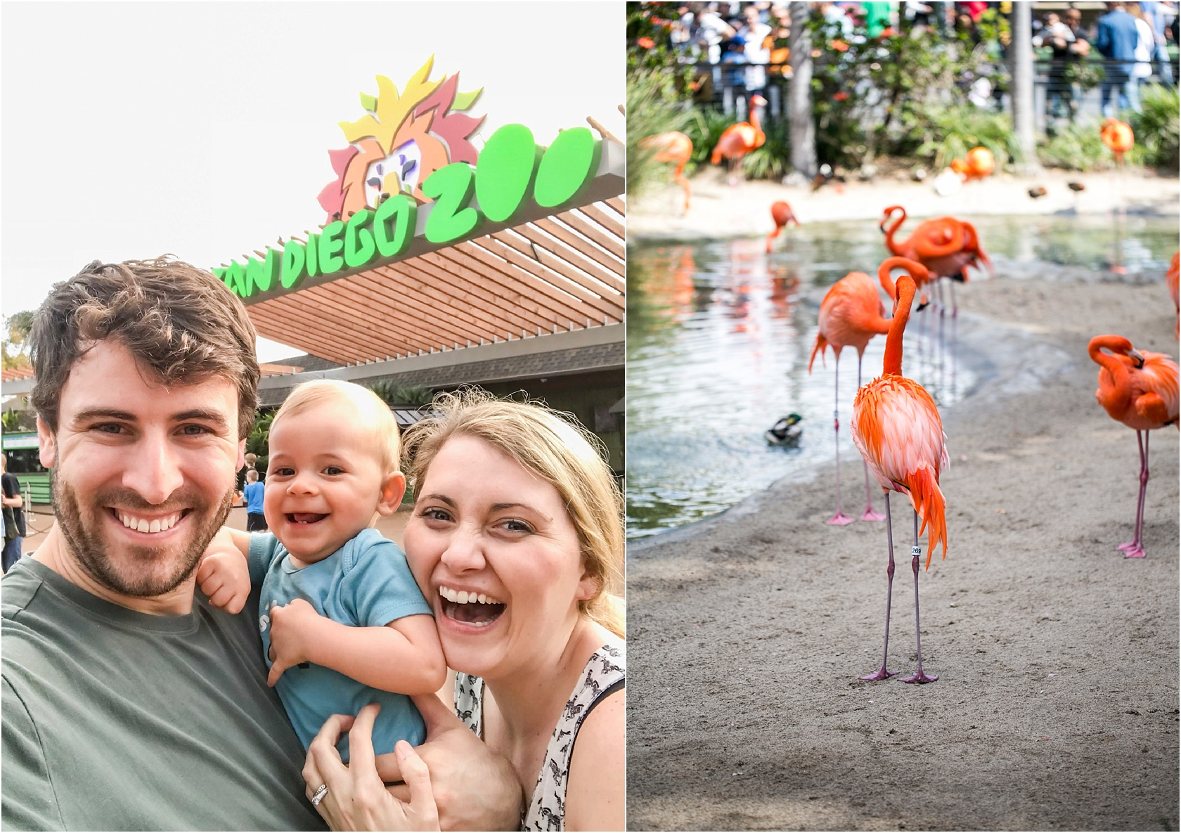 We all loved the zoo!
