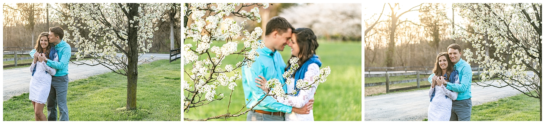 Chelsea Phil Private Estate Engagement Living Radiant Photography photos color_0029.jpg