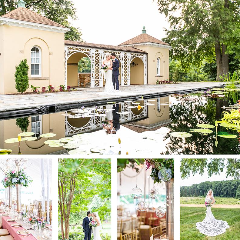 ventura-wedding-multi-image-living-radiant-photography-wedding-photography-header.png