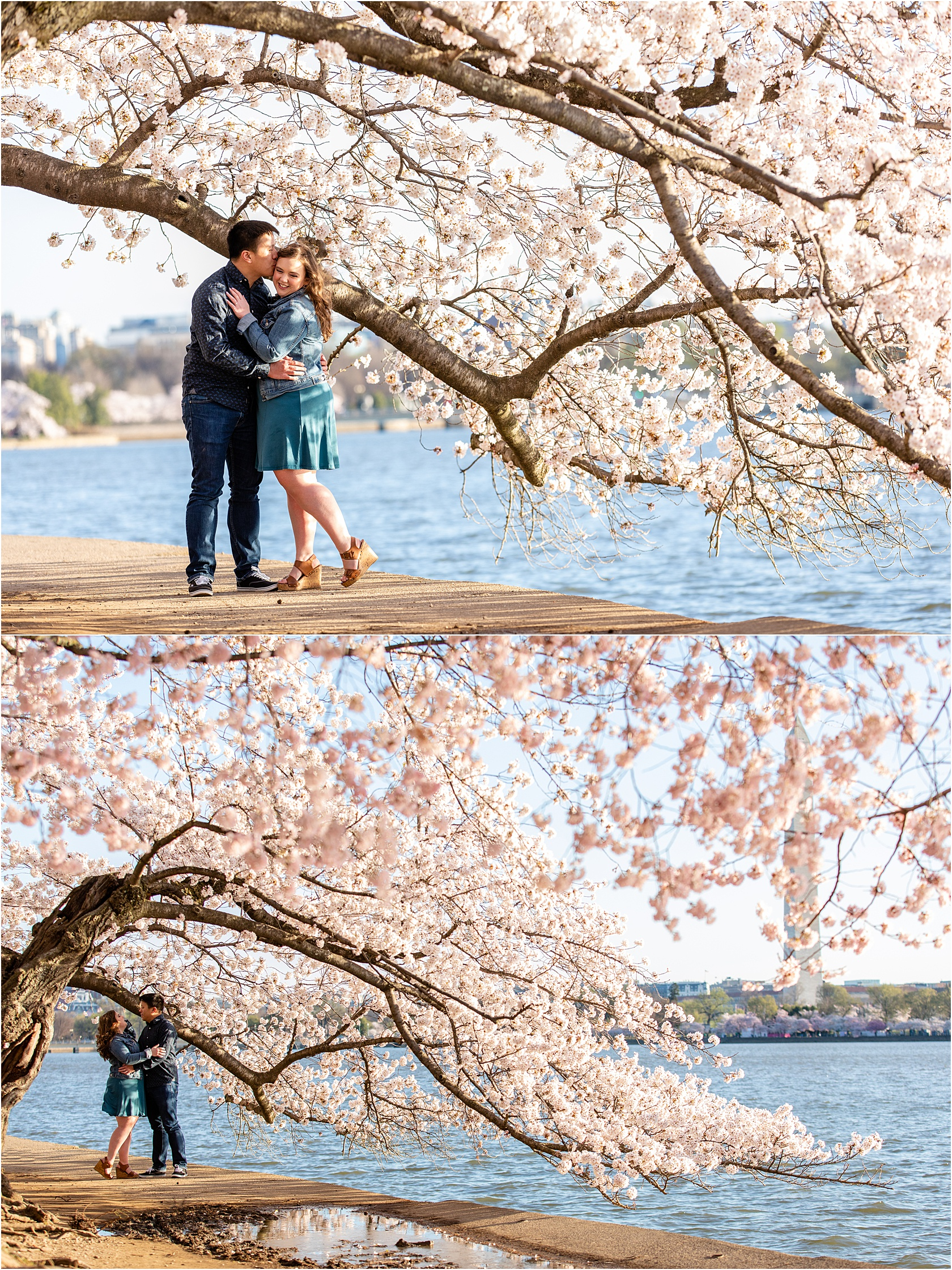MelissaKevinCherryBlossomsDCEngagementSessionMarch2019LivingRadiantPhotographyphotos_0016.jpg