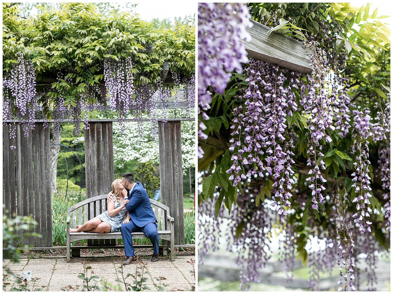 Emily Greg Brookside Gardens Engagement Session Living Radiant Photography stomped_0013.jpg