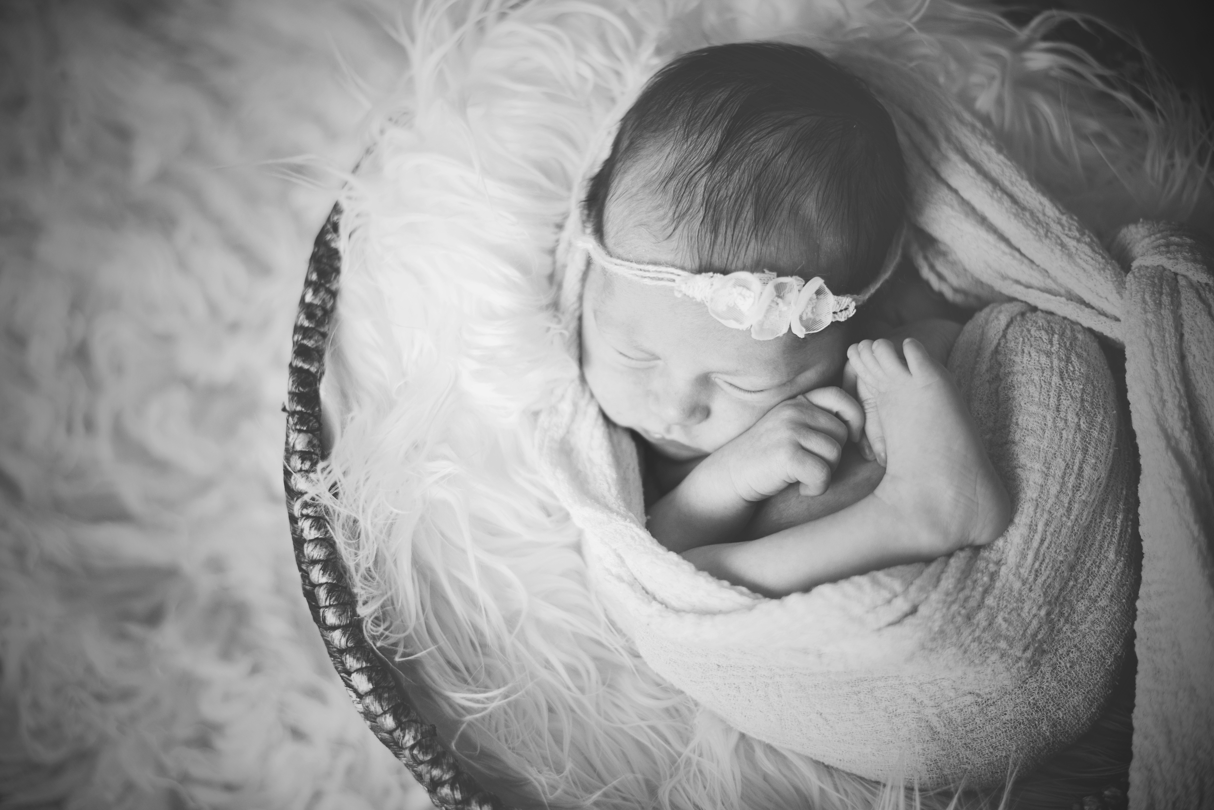 Melissa_Zimmer_Newborn_Photographer_5.jpg