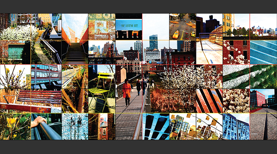 PHOTOGRAPHY + DESIGN  :: Wall Mural ::  The High Line