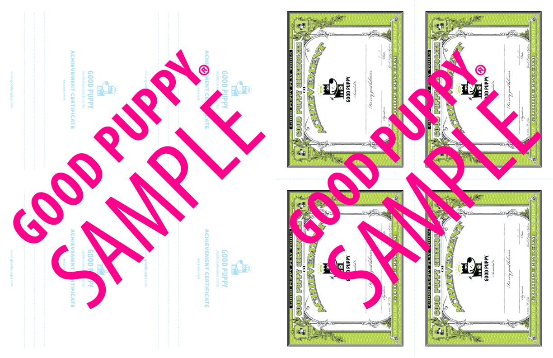 GoodPuppy-Children_Behavioral_System-ManualAndToolkit-Full_Sample-42.jpg