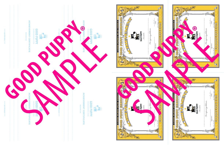 GoodPuppy-Children_Behavioral_System-ManualAndToolkit-Full_Sample-43.jpg