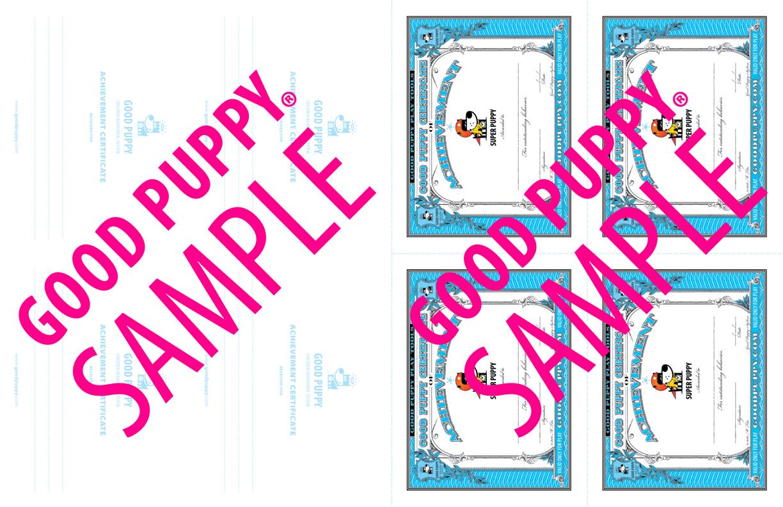 GoodPuppy-Children_Behavioral_System-ManualAndToolkit-Full_Sample-41.jpg